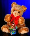 STEIFF Radko Bear & Ornament Set 2006